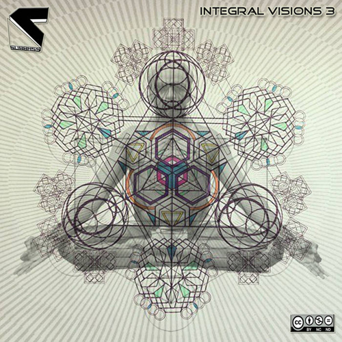 subbass-integralvisoins3